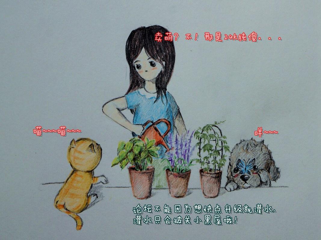 DSC02878_副本_副本.jpg