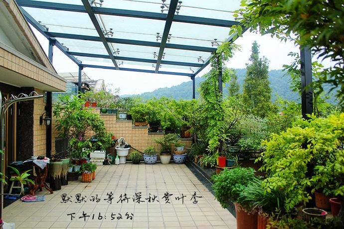 IMG_3583_副本.jpg
