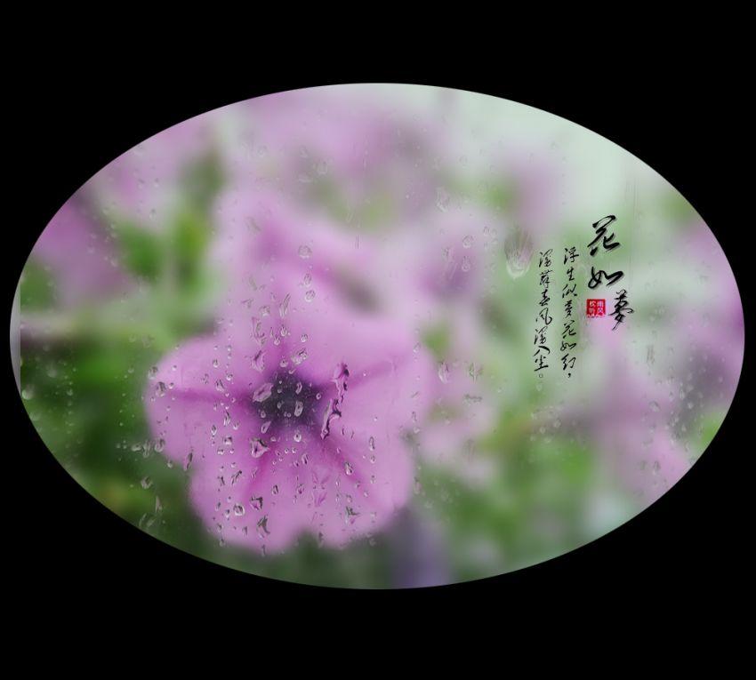 花如梦6.jpg
