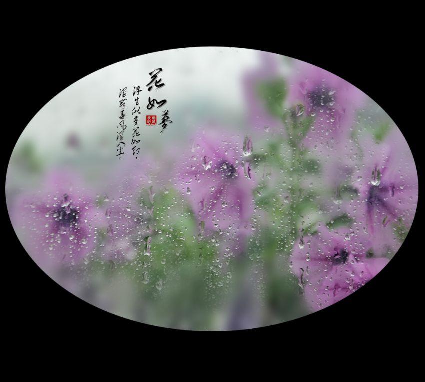 花如梦5.jpg