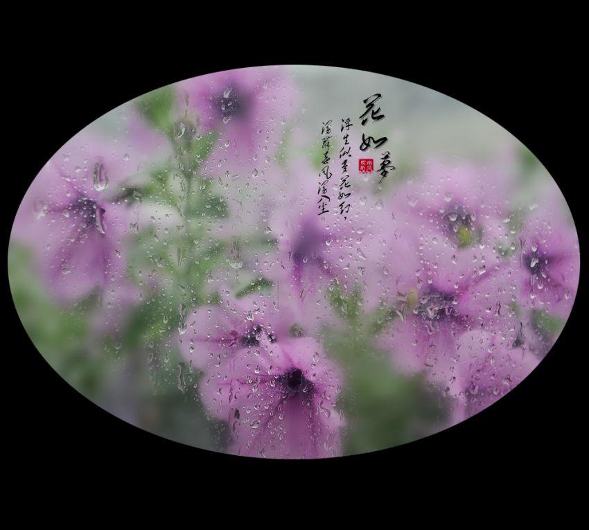 花如梦7.jpg