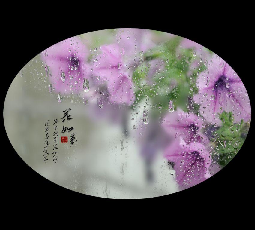 花如梦12.jpg