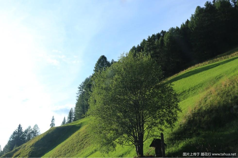阿尔卑斯之夏