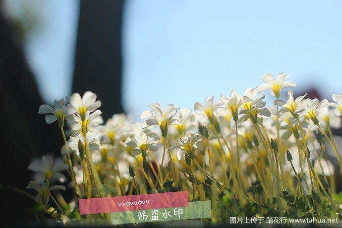 IMG_5386_副本.jpg