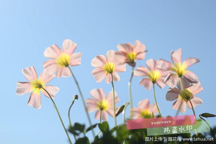 IMG_5544_副本.jpg